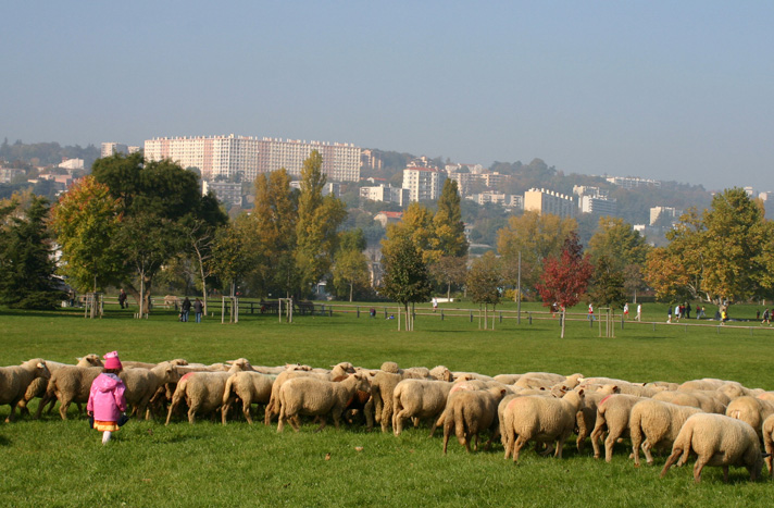 La ville agricole et l agriculture urbaine un quotidien for Agence paysage lyon