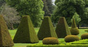 parc-et-jardins-azay-le-ferron[1]