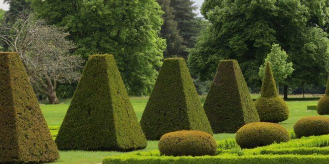 Comme un jardin à la française – Ou, la règle d'un jeu expliquée par deux jardiniers